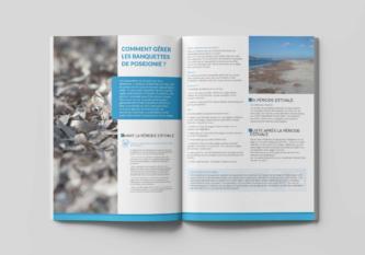 dreal-posidonie-brochure (1)